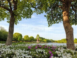 自然,風景,空,公園,花,春,屋外,湖,緑,ベンチ,川,水面,風車,池,景色,草,樹木,新緑,草木