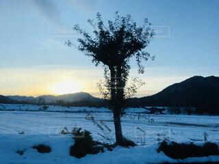 自然,風景,空,雪,屋外,湖,雲,水面,山,樹木