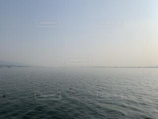 自然,海,空,鳥,屋外,湖,水面,水平線