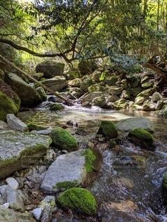 自然,風景,屋外,水面,滝,樹木,岩