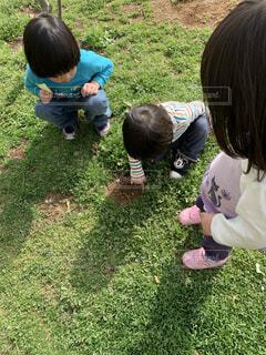 子ども,屋外,女の子,草,人物,人,幼児,男の子,蟻の穴
