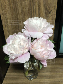 屋内,花束,バラ,薔薇,テーブル,草木