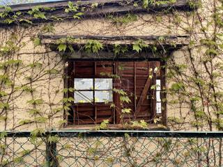 建物,屋外,窓,古い,ドア,草木,放棄