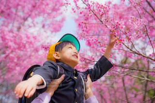 入学おめでとうの写真・画像素材[4346338]