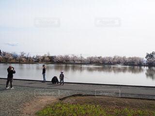空,春,桜,屋外,湖,晴れ,晴天,川,水面,海岸,水辺,草,樹木,人,癒し,心地よい