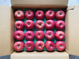 りんごの贈り物の写真・画像素材[4393363]