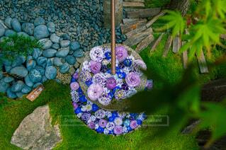 花,綺麗,アート,草,たくさん,草木,花手水