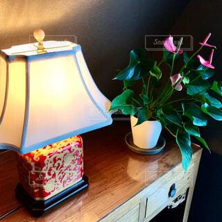 花,屋内,花瓶,キャンドル,ランプ,植木鉢,壁,観葉植物,アンセリューム アンティーク