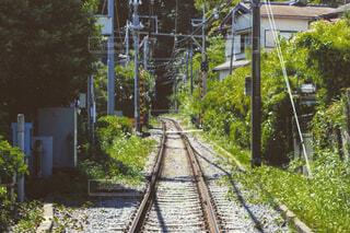 背景に木がある電車の線路上の電車の写真・画像素材[4419631]