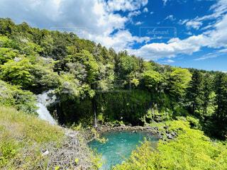 静岡県 白糸の滝の写真・画像素材[4378997]