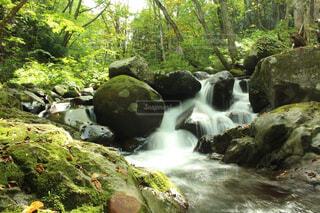 自然,屋外,水,川,水面,樹木,岩,PENTAX,草木,k50