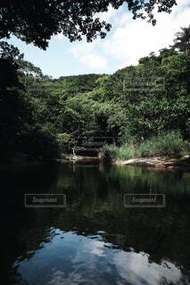 自然,風景,空,屋外,川,水面,池,樹木,日中