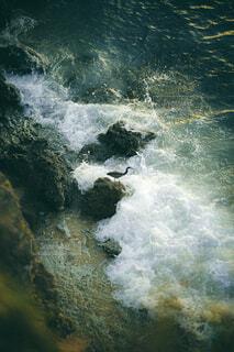 自然,海,夕日,屋外,太陽,波,水面,日中,乗馬