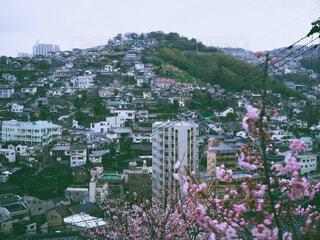 桜,屋外,街,樹木,フィルム,長崎,フィルム風