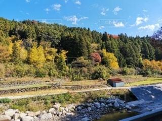 自然,風景,空,秋,森林,屋外,雲,川,山,草,樹木,草木