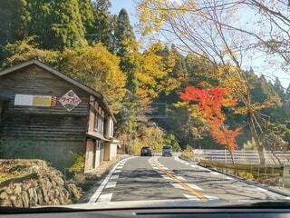 風景,緑,道路,山