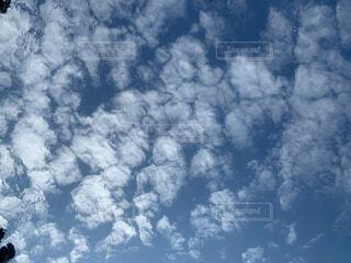 自然,風景,空,屋外,雲,水面,博物館,ゆらゆら,不思議,パターン