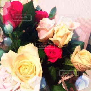 花,花束,バラ,薔薇,誕生日,草木,切り花,フロリバンダ,ハイブリッドティーローズ