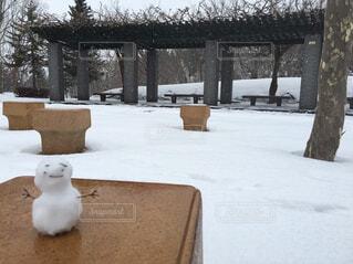 冬,雪,屋外,樹木,雪だるま,家具,冷たい
