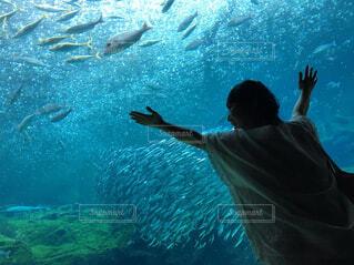 魚を呼ぶ魔法使いの写真・画像素材[4356497]