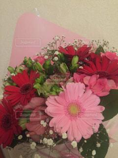 花,ピンク,赤,花束,花瓶,花びら,花柄,草木,ガーベラ,切り花,フローラ