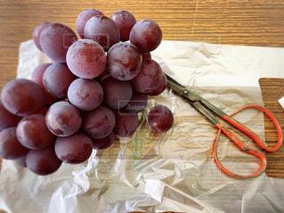 食べ物,秋,屋内,テーブル,果物,大きい,甘い,ブドウ,葡萄,美味しい,ジューシー,yummy,ハサミ,ぶどう,巨峰,葡萄狩り,極甘