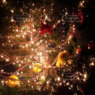 下から見た素敵な輝きのクリスマスツリーの写真・画像素材[4373249]