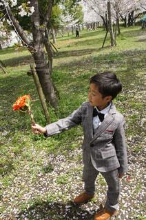 公園,春,桜,屋外,花束,少年,男の子,新一年生,キメ顔,新生活,革靴,スーツ,男の子スーツ