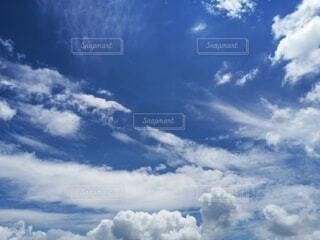 空の雲の群の写真・画像素材[4625902]