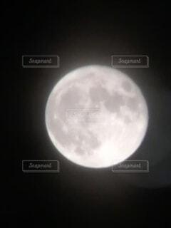 月の写真・画像素材[4878031]