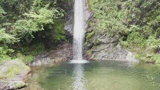 自然,屋外,川,滝,樹木,マイナスイオン