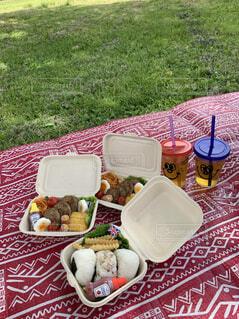 公園ピクニックの写真・画像素材[4377474]