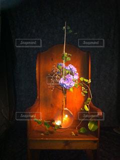 植物のの写真・画像素材[4364861]