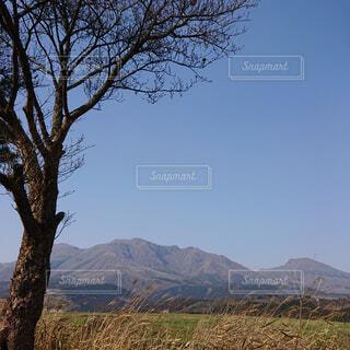 自然,風景,空,森林,屋外,山,景色,樹木,大地,キャンプ,高原,乾燥,草木,山腹,バック グラウンド