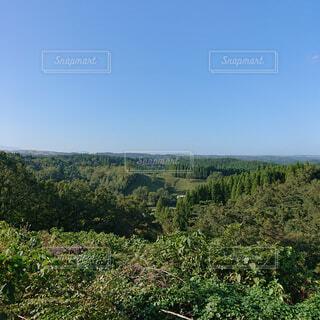 自然,風景,空,森林,木,屋外,景色,草,樹木,新緑,キャンプ,高原,草木,日中,山腹