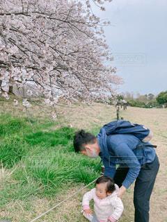子ども,風景,花,屋外,草,樹木,人物,人,少し