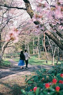 花に囲まれた人々の写真・画像素材[4360040]