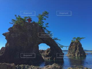 大きな岩の前の木の写真・画像素材[4362820]