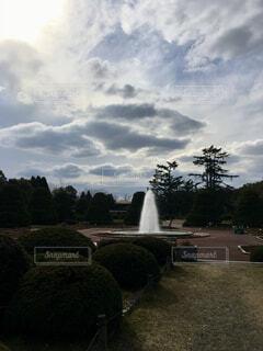 空,屋外,白,雲,水,日差し,光,樹木,噴水,植物園,陽射し,草木,神々しい