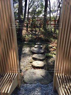 自然,冬,屋外,神社,光,椅子,樹木,パワースポット,地面,石,陽射し,草木,12月,遠近