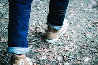 秋の足音の写真・画像素材[4426266]