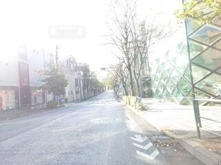 風景,空,屋外,道路,樹木,道,歩道,通り,日中