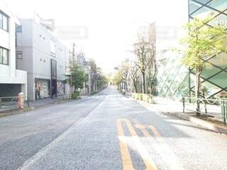 風景,空,建物,屋外,道路,景色,樹木,道,通り