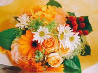 花のクローズアップの写真・画像素材[4364509]