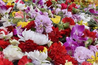花,花瓶,バラ,花びら,薔薇,オシャレ,フラワーアレンジ,花柄,草木,おしゃれ,切り花