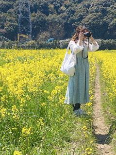 女性,風景,花,春,カメラ,花畑,屋外,植物,ワンピース,黄色,菜の花,女,草,樹木,人,草木
