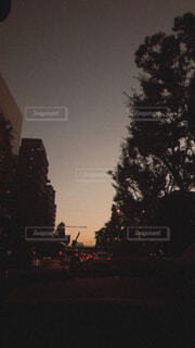 夜の道路の写真・画像素材[4393458]
