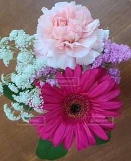 花,リビング,屋内,ピンク,花束,フラワー,プレゼント,カーネーション