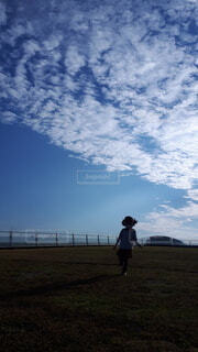 グリーンの芝生と青い空の写真・画像素材[4367723]