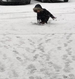 自然,雪,屋外,白